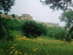 https://flic.kr/p/yPmhy1   Luigi Speranza -- ITALIA -- Tempio di Giunone, AGRIGENTO.