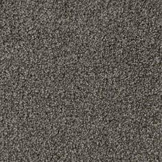 URBAN OASIS, Playground, Texture PetProtect® Carpet - STAINMASTER®