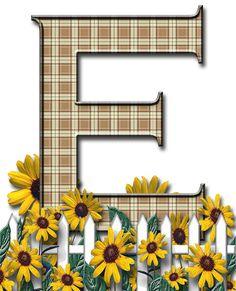 Letra con verja floral.....E