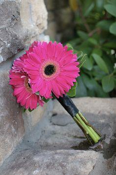 fall gerber daisy wedding flowers   BB0592-Hot Pink Gerber Daisy Bouquet