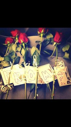 Cute Promposal with roses and tags spelling prom. So cute❤️ One of my faves! - Cute Promposal with roses and tags spelling prom. So cute❤️ One of my faves! Cute Prom Proposals, Homecoming Proposal, Prom Date, Formal Proposals, High School Dance, School Dances, School Fun, Bridal Musings, Will Turner
