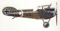 Phönix D.II [122.05] /Flik 55J  by Sigmund Tyrlik Pergine Airfield, May - June 1918, flown by Korporal Otto Kullas.