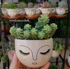 Painted Plant Pots, Painted Flower Pots, Pebeo Porcelaine, Blooming Succulents, Flower Pot Design, Clay Pot Crafts, Boho Diy, Nature Crafts, Pottery Painting