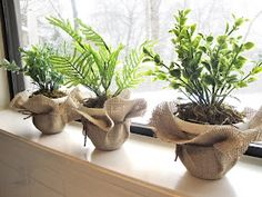 Katies Life Ever After: DIY: Faux Potted Plants Wrapped in Burlap