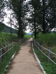 화포천 생태공원