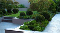 Garden design by Lisa Ellis Gardens #landscapedesign #gardendesign #landscapedesignmelbourne #gardendesignmelbourne #landscape #garden