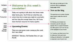 TIP: Too many fonts used together make your email look scattered and disorganized.