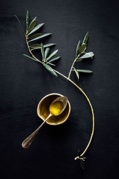 Olives groves are few and far between in the Basque Country, due to the terrain and climate. Olives and extra-virgen olive oil, however, play an integral role in Basque cuisine. Menue Design, Food Design, Dark Food Photography, Still Life Photography, Food Styling, Foto Transfer, Belle Photo, Food Pictures, Food Art