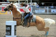 Brittany Pozzi <3 love her horse!