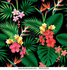 Seamless tropical jungle floral pattern with beautiful orchids,strelitzias and hibiscus flowers. Vector repeat illustration.