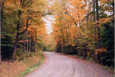love roads, love autumn, love drives
