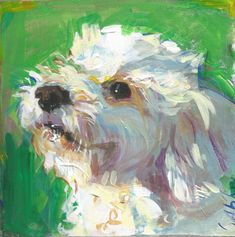 """A dog painting a day – """"Bear"""" the . The post A dog painting a day – """"Bear"""" the Toy Poodle Poodle Drawing, Poodle Mix Breeds, Paint Your Pet, Watercolor Animals, Dog Portraits, Art Plastique, Animal Paintings, Dog Art, Painting Inspiration"""