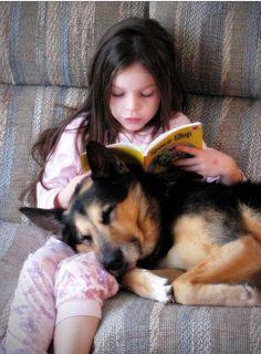 你睡觉我看书