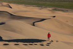 Um oásis no Deserto de Gobi - Mundo por Terra