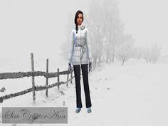 Sim Creator Ann's Winter Cas Background