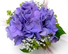 purple hydrangea bouquet - Google Search