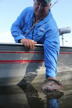 1000 images about captain dencil powell on pinterest for What kind of fish does captain d s use