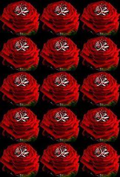 Muhammed Sav, Muhammad, Islamic Art Calligraphy, Cute Panda, Alhamdulillah, Allah, Neon Signs, Wallpaper, Jeans