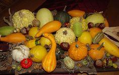 Kalebassen Pumpkin, Vegetables, Winter, Food, Winter Time, Pumpkins, Essen, Vegetable Recipes, Meals