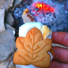 Canada Day S'mores (with maple cookies! Canada Day 150, Happy Canada Day, O Canada, Maple Cookies, Leaf Cookies, Canada Day Crafts, Canada Day Party, Canadian Food, Canadian Recipes