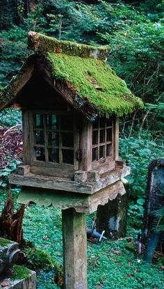 Wood and glass birdhouse with a mossy roof!