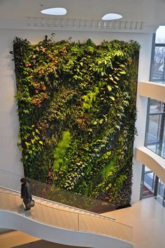 7 Top Ideas For Your Vertical Vegetable Garden Vertical Green Wall, Vertical Garden Design, Green Architecture, Landscape Architecture, Landscape Design, Indoor Flowers, Indoor Plants, Vertical Vegetable Gardens, Green Facade