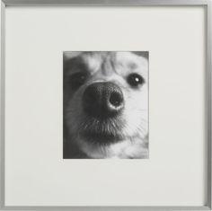 "gallery frames 8""x10"" photo  | CB2"