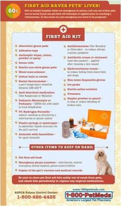 50 Pet First Aid Kit Ideas Pets First First Aid Kit First Aid