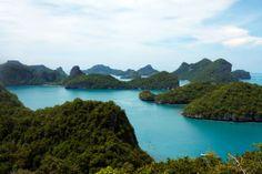 wow tropical Nature Thailand