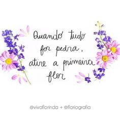 #instaflowers #inspiração #peace #anoflorido #amoflores #flores #flowers #frases #beautiful #natureza