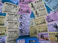 AlcBlog: Em um orelhão de Copacabana( Rio), diversos anúncios de ''profissionais do sexo'' disputam espaço...