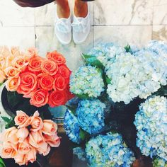 Bouquets upon bouquets. May Flowers, Beautiful Flowers, Fresh Flowers, Bouquets, Plants Are Friends, No Rain, Up Girl, Pretty Pictures, Mother Nature