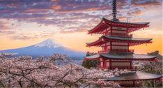 Voulez-vous souhaiter bonne année 2020 en japonais, voici quelques message pour souhaiter une joyeuse nouvelle année en japonais, et quelques photos aussi ! Tokyo Travel Guide, Japan Travel, Kyoto, Tokyo Ville, Tokyo With Kids, Ligne Bus, Mount Fuji Japan, Yoyogi Park, Kid Friendly Restaurants