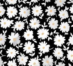 Daisies | Leah Goren