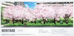 ザ・ガーデンズ東京王子 パンフレットイメージ