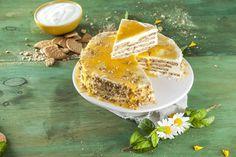 Receita de Semifrio de bolacha com iogurte. Descubra como cozinhar Semifrio de bolacha com iogurte de maneira prática e deliciosa com a Teleculinária!