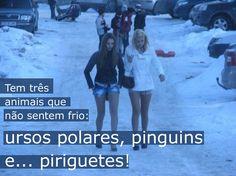 Animais populares de inverno