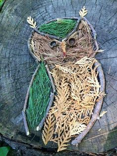 Land art owl made entirely from natural materials Art Et Nature, Theme Nature, Nature Crafts, Land Art, Kids Crafts, Arts And Crafts, Nature Activities, Forest School, Environmental Art