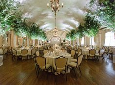 Watson Studios, Natalie Watson Photography | Snippet & Ink, love the color and patterns on the ceiling from the foliage
