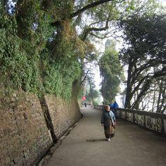 Darjeeling - India