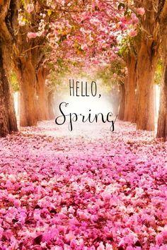 Hello, #Spring