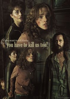 Harry, Hermione & Ron at the Shrieking Shack...first meeting with Sirius