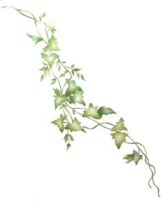 stencils | Click on image for a larger view of stencil design Vine Drawing, Leaf Drawing, Plant Drawing, Flower Vine Tattoos, Ivy Tattoo, Tattoo Mama, Mural Floral, Botanical Drawings, Flower Drawings