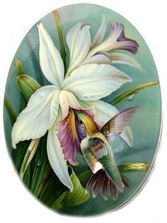 flor interesante