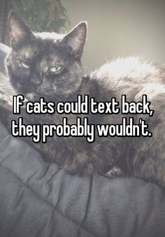 If cats could text back, they probably wouldn't.