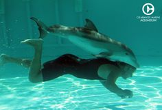 Let this baby photo of Hope brighten your day!