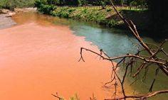 Fantástico percorre o Rio Doce para analisar qualidade da água