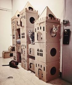 Cardboard Forts, Cardboard Cat House, Cardboard Castle, Cat Castle, Cat House Diy, Cat Playground, Photo Chat, Cat Room, Pet Furniture
