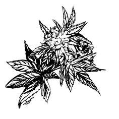 Cannabis Ink 004 #brainwitch