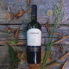 Last wine the year! Queulat Syrah Single wineyard Gran Reserva -2012 - Weinkrake #mywinemoment